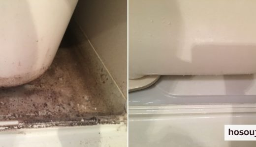 お風呂(浴室)のエプロン・ドア・鏡のお掃除 東京都大田区 入居前の再生クリーニング