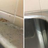 お風呂・浴室掃除 ステンレス浴槽鏡面仕上げ 研磨・補修 1DK空室クリーニング 東京都大田区 入居前クリーニング