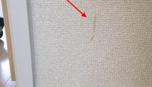 クロス(壁紙)クリーニング 東京都江東区 入居前お掃除